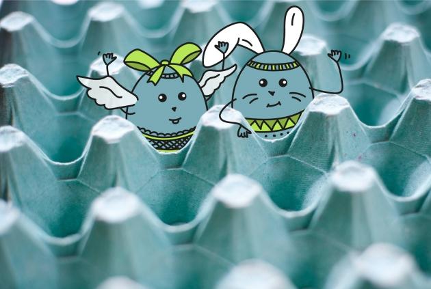 ACID-Solutions se prépare à l'arrivée des œufs !