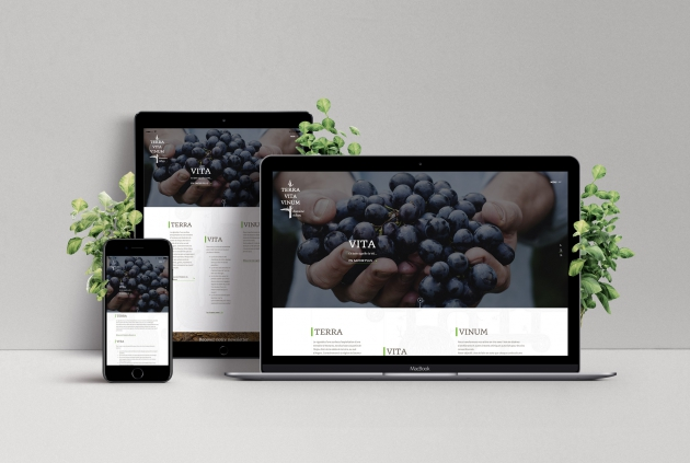 Terra Vita Vinum : un site internet authentique et vivant